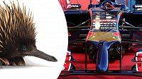 Toro Rosso STR9 vypadá jako ježura.
