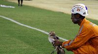 Sově, kterou panamský fotbalista surově odkopl za postranní čáru, se okamžitě dostalo péče veterinárního lékaře.