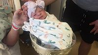 Fanoušci Blues posadili svou nově narozenou holčičku do Stanley Cupu.