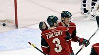 Marek Židlický slaví se spoluhráčem z Minnesoty Antti Miettinenem gól do sítě St. Louis Blues.