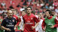 Zůstane Cesc Fabregas po boku Tomáše Rosického v Arsenalu?