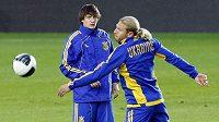 Fotbalisté Ukrajiny mají obrovské problémy na brankářském postu.