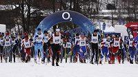 Orlický maraton