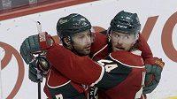 Hokejista Minnesoty Wild's Matt Cullen, vlevo, se raduje spolu s Martinem Havlátem z góli do sítě Phoenixu Coyotes.
