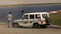 Měřený trénink na GP Indie pozdržel pes toulající se na trati okruhu Buddh International.