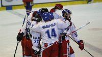 Česká hokejová reprezentace, ilustrační foto