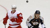 Hokejista Martin Erat (vpravo) z Nashvillu sleduje v NHL spolu s detroitským útočníkem Darrenem Helmem puk.