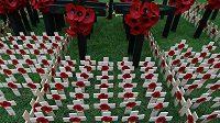 Květy vlčího máku jsou symbolem obětí válečných konfliktů