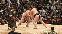 Turnaje zápasníků sumo jsou v Japonsku jedněmi z nejsledovanějších sportovních podniků.