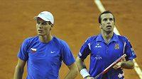 Čeští tenisté Tomáš Berdych (vlevo) a Radek Štěpánek se ve Washingtonu vrací na kurty.