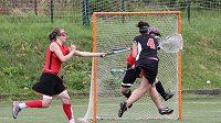 Národní liga ženského lakrosu, první zápas o 3. místo, LCC Chicks – SK Lacrosse Jižní Město