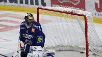 Roman Málek v brance hokejistů Vítkovic