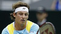 Argentinský tenista David Nalbandian