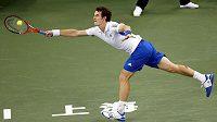 Brit Andy Murray na turnaji v Šanghaji.