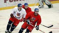 Angel Krstev (vpravo) posílí hokejovou Spartu.