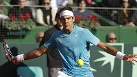 O postup argentinských tenistů se zasloužil i Juan Martin Del Potro