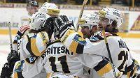 Hokejisté Litvínova