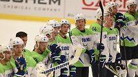 Zklamaní hokejisté Slovinska.