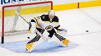 Gólman Bostonu Bruins Dan Vladař (80) při rozcvičce před utkáním.