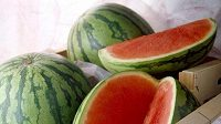Není jasné, zda je meloun ovoce, nebo zelenina. Ale hlavně, že nám pomáhá