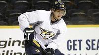Martin Erat z Nashvillu je nejlépe placeným českým hráčem v NHL, v celkovém žebříčku se ale nachází až v sedmé desítce.