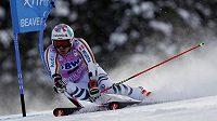 Německý lyžař Stefan Luitz na trati obřího slalomu v Beaver Creeku.