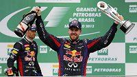 Sebastian Vettel slaví v Brazílii vítěznou a rekordní tečku za letošní sezónou formule 1.