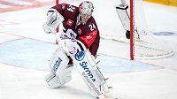 Brankář Sparty Praha Tomáš Pöpperle.