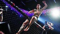 Davida Dvořáka čeká zápas v UFC