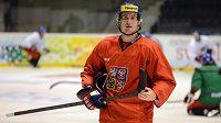 Útočník Roman Červenka během tréninku hokejové reprezentace v Pardubicích.
