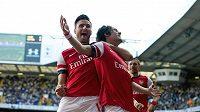 Střelec Tomáš Rosický (vpravo) se raduje se spoluhráčem z Arsenalu Olivierem Giroudem z gólu proti Tottenhamu.