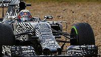 Když zebra ryje hlínu kolem trati... Red Bull pilota Daniela Ricciarda během úterních testů v Jerezu.
