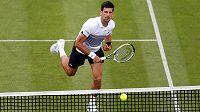 Novak Djokovič na turnaji v Eastbourne.