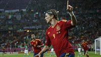 Fernando Torres oslavuje gól proti Irsku