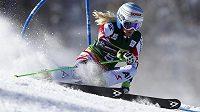 Rakouská lyžařka Eva-Maria Bremová vyhrála obří slalom v Aspenu.