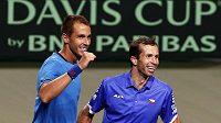 Lukáš Rosol (vlevo) a Radek Štěpánek se radují z postupu do semifinále Davisova poháru po výhře nad Japonskem.