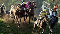 Náročnou trať Velké pardubické zvládlo při 125. ročníku jen dvanáct koní. Kolik běžců protne cíl?
