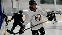David Pastrňák se v pondělí v Torontu konečně zapojil do tréninků Bostonu.