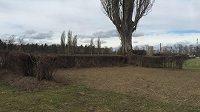 Novinkou je budování tzv. tréninkového Taxisu, který má umožnit koním bezpečně si náročnou překážku vyzkoušet. Příkop za živým plotem je vymezen pouze opticky.