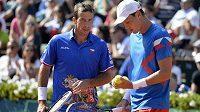 Radek Šěpánek a Tomáš Berdych během Davis Cupu