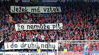 Vzkaz fanoušků Viktorie Plzeň.