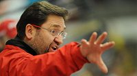 Petr Fiala by se měl stát novým koučem hokejové Komety Brno.