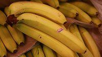 Banány. Ano. Pro doplnění sacharidů ideální možnost.