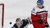 Český křídelník Michal Birner cloní kanadskému gólmanovi Calvinu Pickardovi v utkání mistrovství světa.