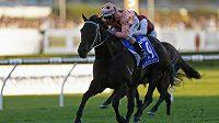 Klisna Black Caviar se žokejem Lukem Nolenem vyhrála další závod, tentokrát v australském Sydney.