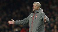 Trenér fotbalistů Arsenalu Arséne Wenger má další starosti.
