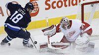 Brankář Detroitu Petr Mrázek v utkání s Winnipegem. Vlevo se jej snaží překonat útočník Jets Bryan Little.