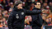 Fotbalisty Německa nepovede v červnových kvalifikačních zápasech o postup na mistrovství Evropy hlavní trenér Joachim Löw.