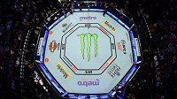 Akce UFC v Brazílii bude bez diváků.