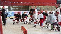 Hokejisté Prostějova musejí přípravu na novou sezonu přerušit.